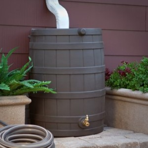 Rain Barrel Rio Rancho NM