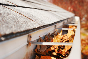 Gutter Covers Grants NM